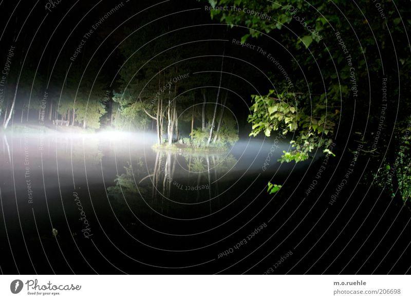 erscheinung Natur Wasser Baum Wald Landschaft Stimmung Insel geheimnisvoll gruselig Seeufer Teich unheimlich Wasserdampf Dunst Birke Nachtaufnahme
