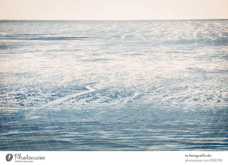 Gezeiten-Spielplatz Sommer Strand Meer Wellen Umwelt Natur Landschaft Urelemente Erde Wasser Himmel Horizont Küste Nordsee Wattenmeer Nordseeküste Priel Sand