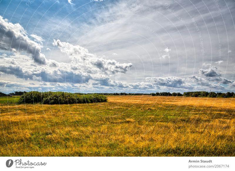Landschaft - Hiddensee Lifestyle Stil Ferien & Urlaub & Reisen Ausflug Sommerurlaub Umwelt Natur Erde Luft Himmel Wolken Frühling Klima Wetter Schönes Wetter