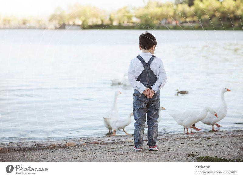 Durchdachtes Kind auf dem See. Rückansicht Mensch Ferien & Urlaub & Reisen Sommer Einsamkeit Lifestyle Traurigkeit Frühling Gefühle Junge Freiheit maskulin