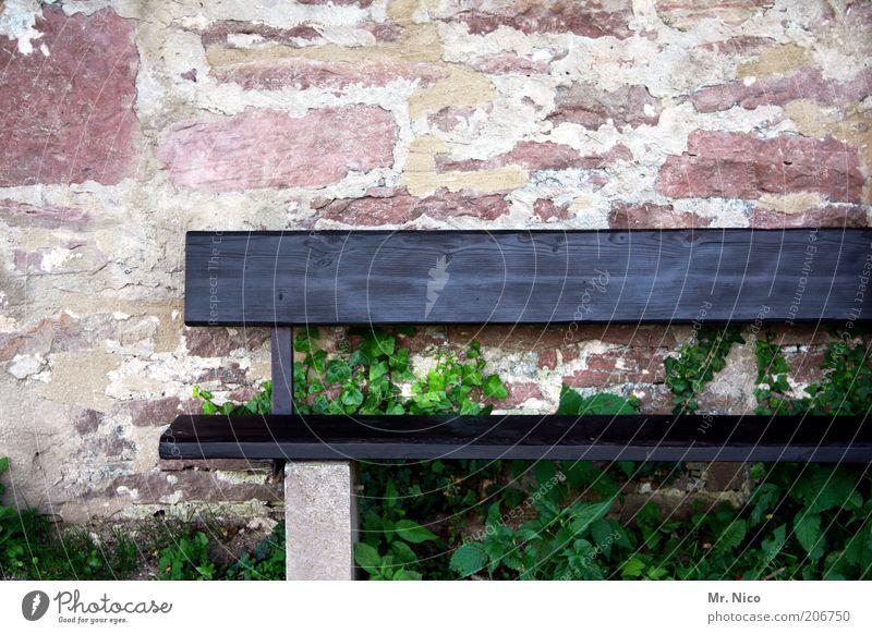 sitzgelegenheit Pflanze rot schwarz Einsamkeit Mauer Umwelt leer Bank Backstein Symbole & Metaphern Sitzgelegenheit Mauerpflanze Stein Holzbank