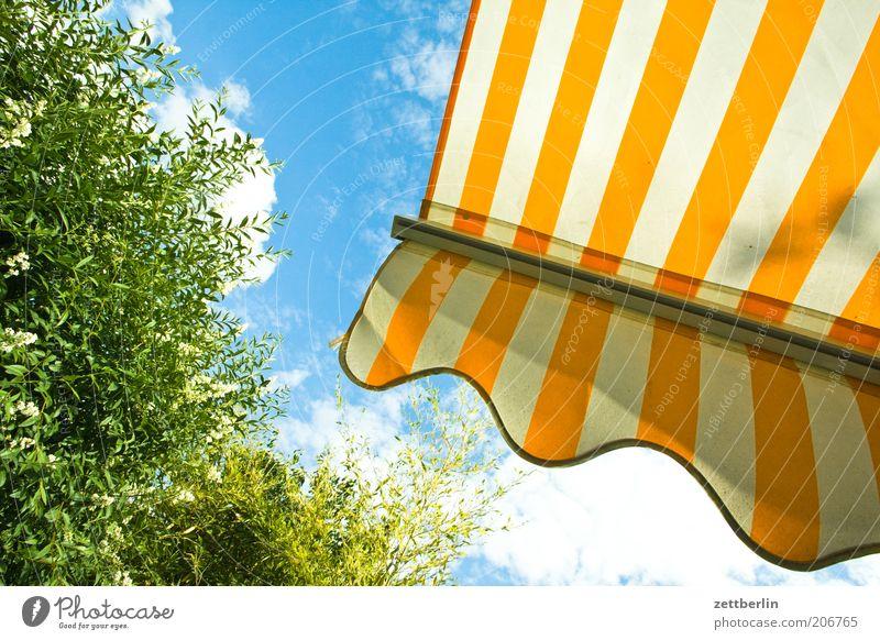 Sommer Ferien & Urlaub & Reisen Freizeit & Hobby Garten Balkon Markise Wetterschutz gestreift Streifen Himmel Froschperspektive Pflanze Hecke Liguster grün