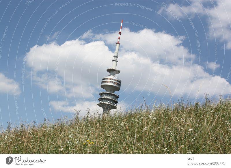 Hoch oben... Sommer Natur Landschaft Himmel Wolken Sonnenlicht Gras Sträucher Wiese Hügel Architektur Sehenswürdigkeit Olympiaturm ästhetisch elegant hoch