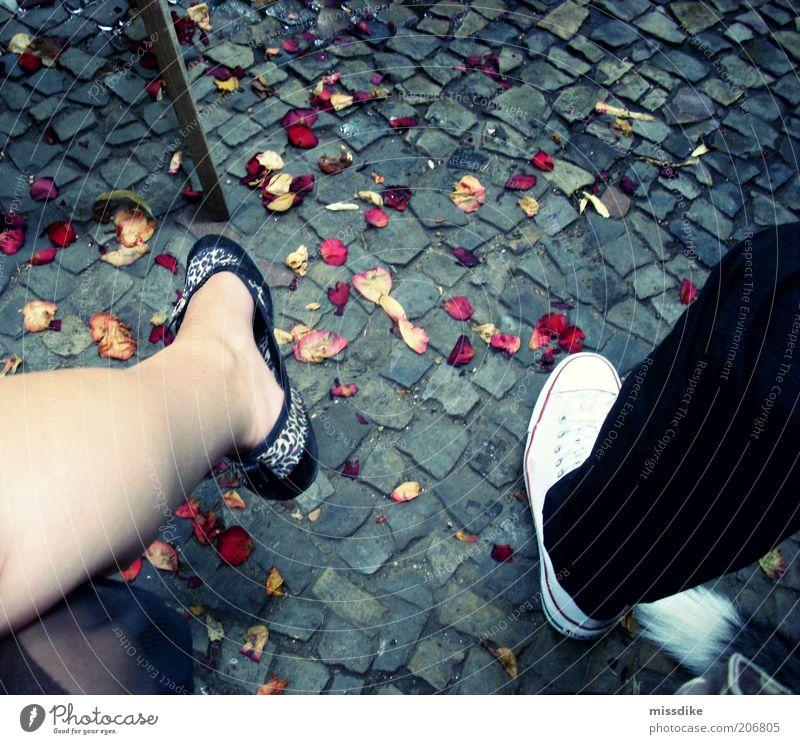hochzeit? Mensch rot gelb feminin Beine Paar Fuß Freundschaft Feste & Feiern Schuhe Zusammensein maskulin Romantik Partner Partnerschaft Turnschuh