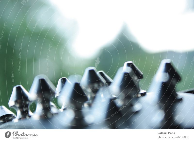 Nietenwald schwarz Stil Mode Metallwaren Spitze Dinge Schmuck silber stachelig Gürtel Accessoire Konzepte & Themen Armband Makroaufnahme