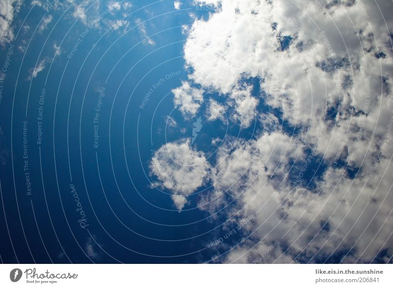 blau-weißer himmel über bayern Himmel Natur Sommer Sonne Wolken Wärme Wetter Klima Schönes Wetter Leichtigkeit Klimawandel Blauer Himmel himmelblau