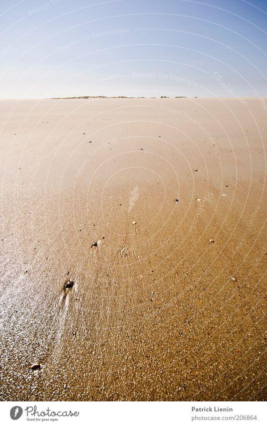 Neverland Natur Wasser Himmel Sonne Meer Sommer Strand Ferien & Urlaub & Reisen Ferne Erholung Wärme Sand Landschaft Luft Stimmung Küste