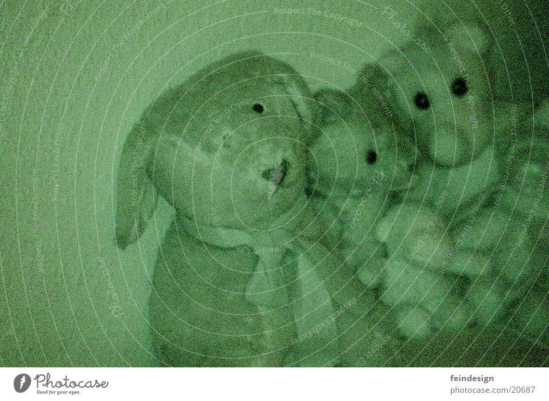 Rat Pack Tier dunkel Wohnung gruselig obskur unheimlich Nachtaufnahme Stofftiere Pudel einäugig Seilschaft