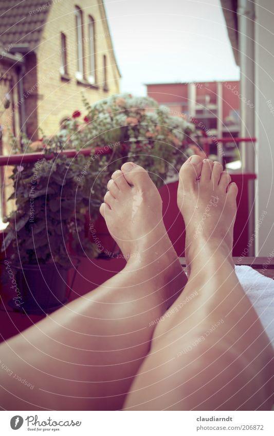 Sommer vorm Balkon Erholung Sommerurlaub Balkonpflanze Mensch Beine Fuß 1 hochlegen Zehen Wärme Knie Pause Retro-Farben Rotstich Kühlung Erfrischung kühlen