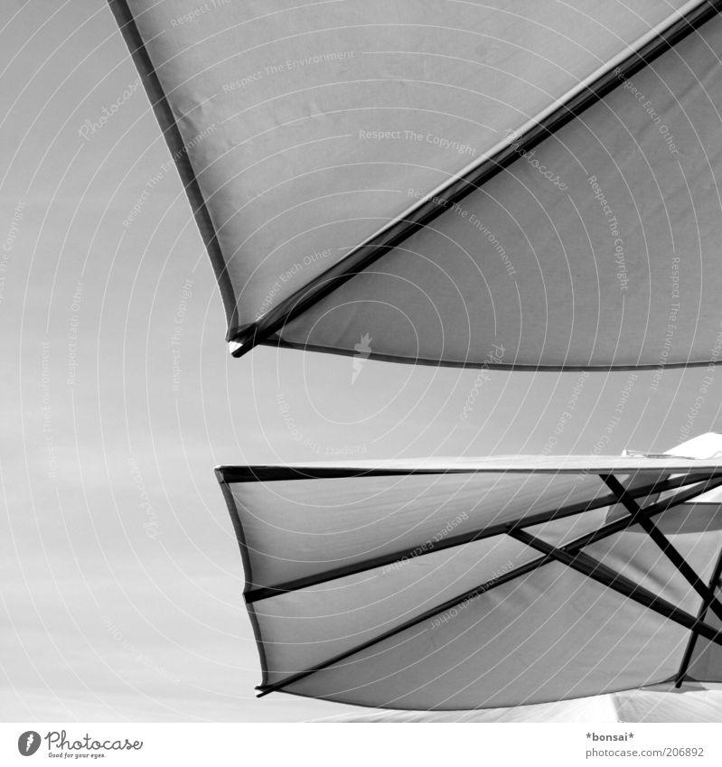 schattenspender weiß Sommer schwarz Erholung Zufriedenheit Design Schutz Stoff Sonnenschirm Schönes Wetter Schirm Strebe eckig Natur gespannt