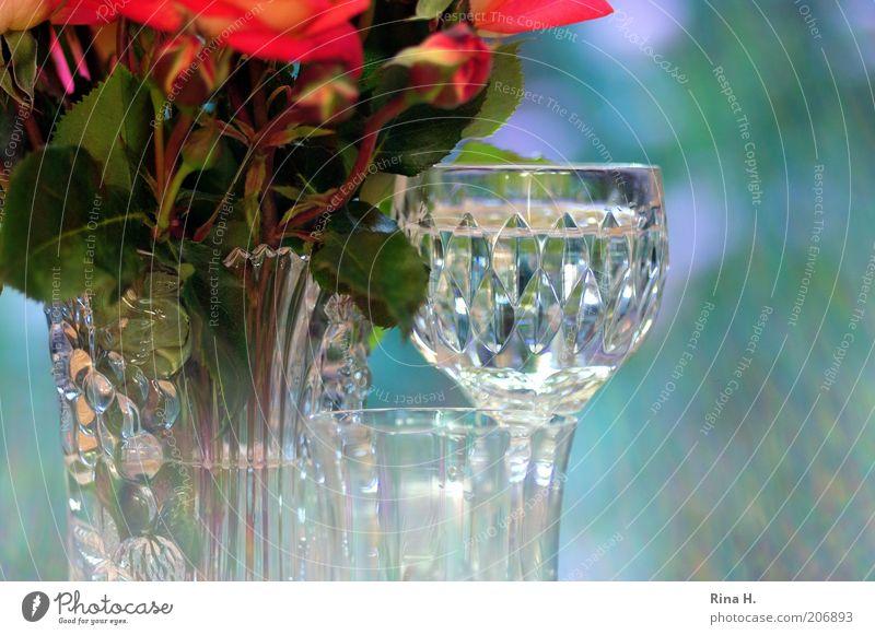Still im Gegenlicht Erfrischungsgetränk Glas Rose ästhetisch positiv blau grün rot Stimmung Lebensfreude Wasser Stillleben Vase Farbfoto Außenaufnahme