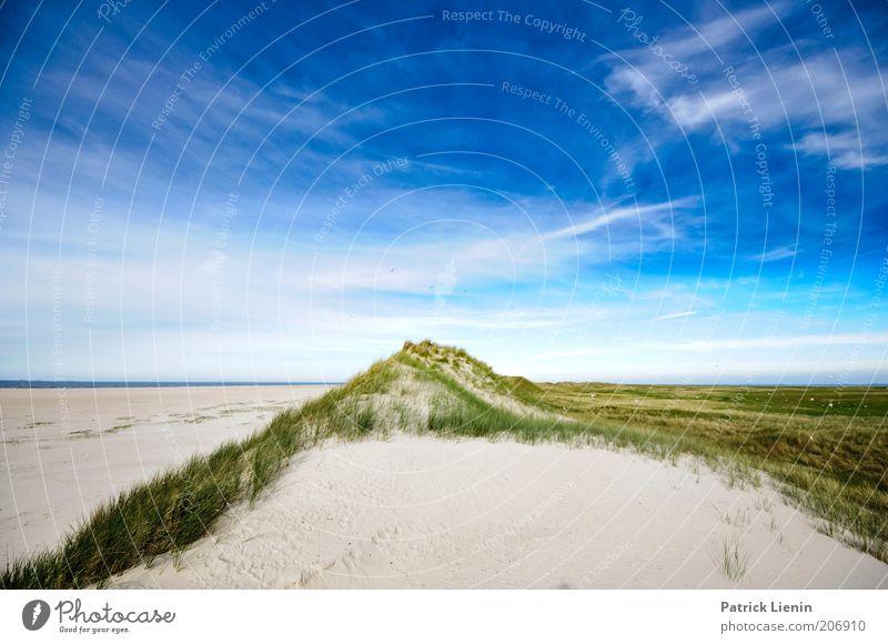 worlds apart Umwelt Natur Landschaft Pflanze Urelemente Erde Sand Luft Himmel Wolken Sommer Küste Strand Nordsee Meer Insel schön Fernweh Spiekeroog Salzwiese