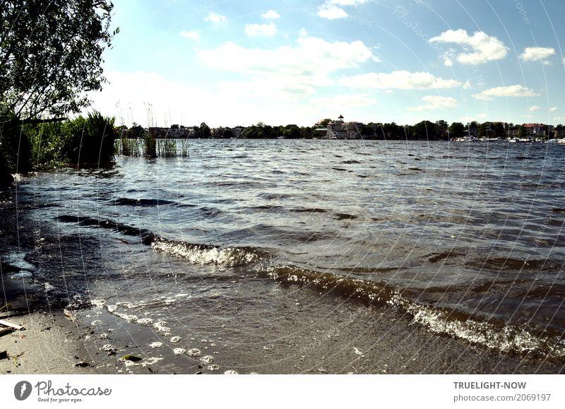 Dank Photocase heute das hier: Potsdam Ufer Skyline. Freizeit & Hobby Ferien & Urlaub & Reisen Tourismus Ausflug Sightseeing Städtereise Sommer Sommerurlaub