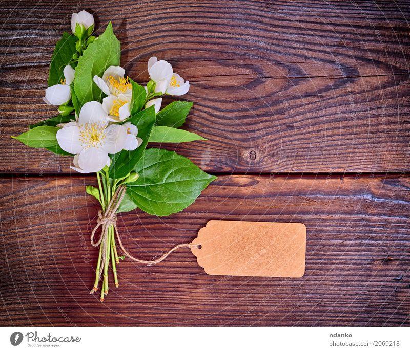 Bouquet von blühenden weißen Jasmin Natur Pflanze Blume Blatt Blüte Blumenstrauß Holz frisch hell natürlich oben gelb grün Farbe Überstrahlung Blütenknospen