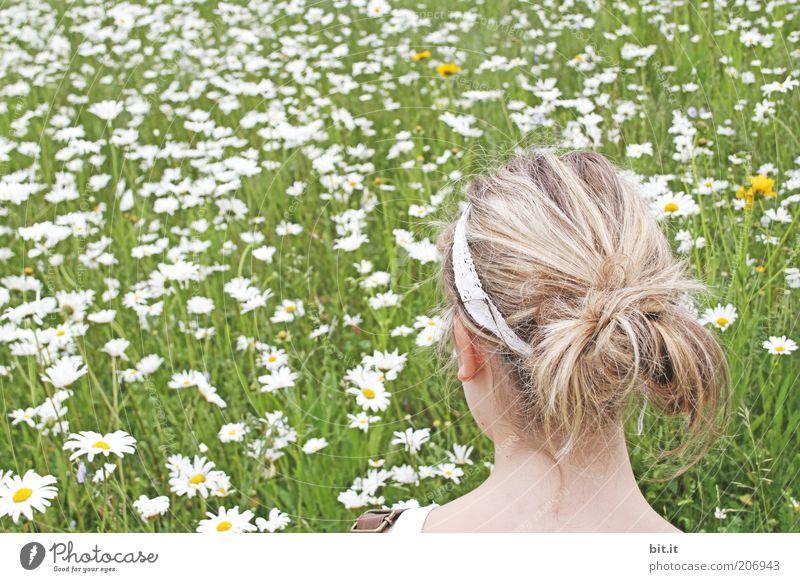 am Blumenmeer Jugendliche grün Sommer Wiese feminin Kopf Haare & Frisuren Frühling träumen blond beobachten Blühend Margerite Junge Frau Blumenwiese