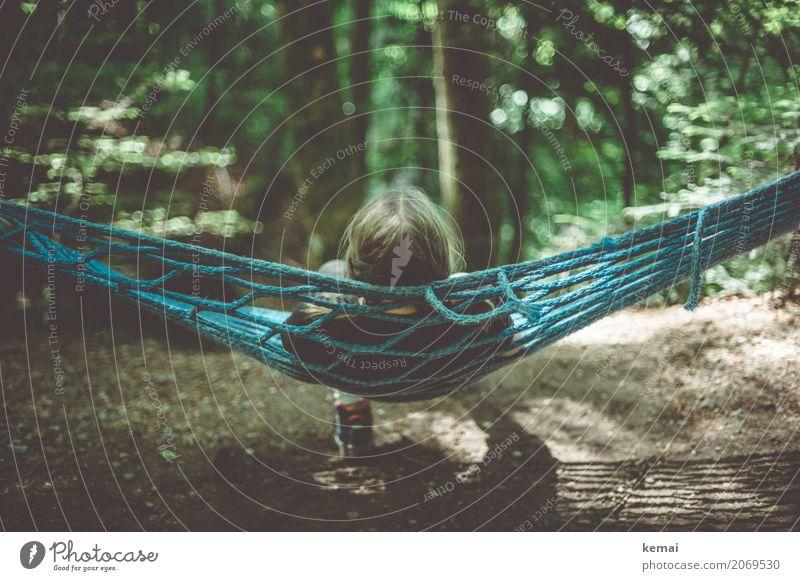 Häng loose Mensch Kind Natur Jugendliche Junge Frau Sommer Erholung ruhig Mädchen Wald dunkel Leben Umwelt feminin Spielen Freiheit