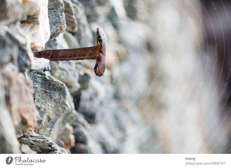 Auch ein T ist mal schräg drauf... Mauer Wand Steinmauer Nagel Metall Rost alt eckig historisch trist grau standhaft Einsamkeit bizarr geheimnisvoll