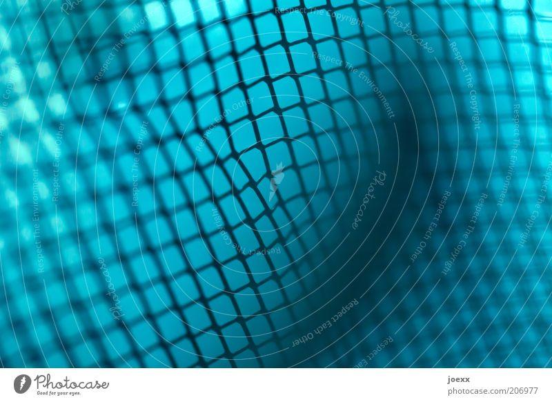 Masche Metall Gitternetz Schutzgitter Netz Maschendraht Farbfoto Detailaufnahme Makroaufnahme netzartig Netzwerk Vernetzung abstrakt