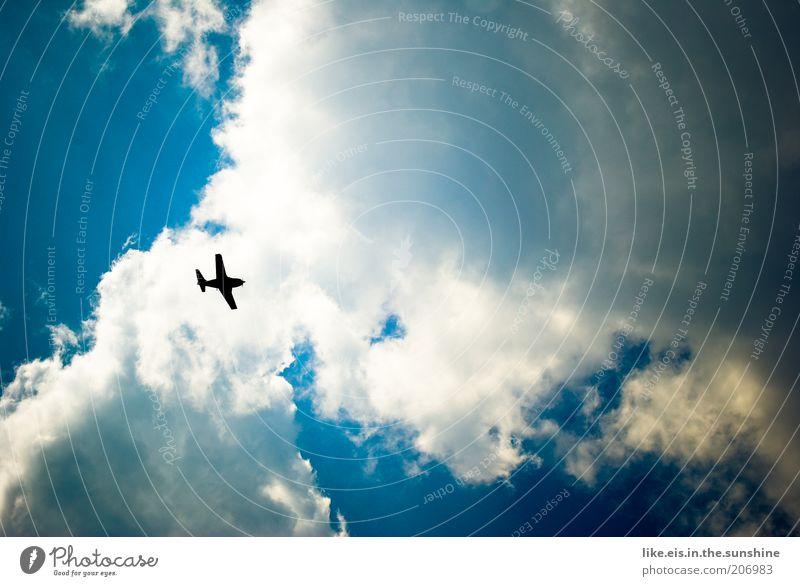 Urlaubsreif!! Himmel Ferien & Urlaub & Reisen Wolken Flugzeug Ausflug Luftverkehr Tourismus Fernweh Fluggerät Passagierflugzeug Wolkenhimmel Urlaubsverkehr