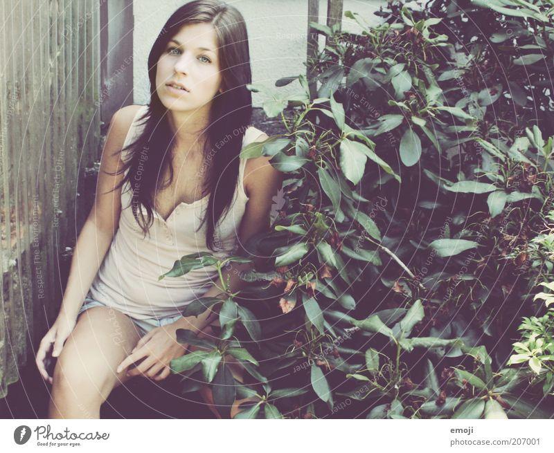 im Garten II Freizeit & Hobby feminin Jugendliche 1 Mensch 18-30 Jahre Erwachsene Denken genießen sitzen offener mund Kirschlorbeer Sträucher Farbfoto