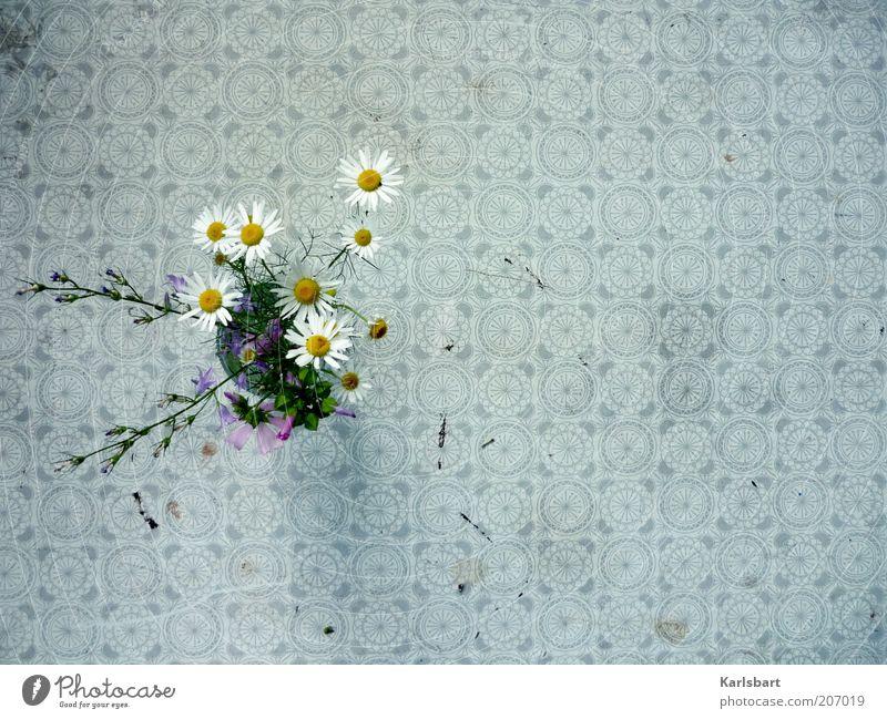 tischleindeckdich. Blume Pflanze Sommer Stil Frühling Tisch Lifestyle Dekoration & Verzierung Kultur Häusliches Leben Gastronomie Blumenstrauß Kreativität Fleck