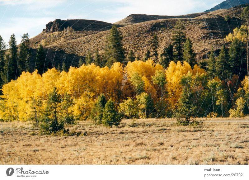 Indian Summer 1 Berge u. Gebirge Abenddämmerung Herbstlaub