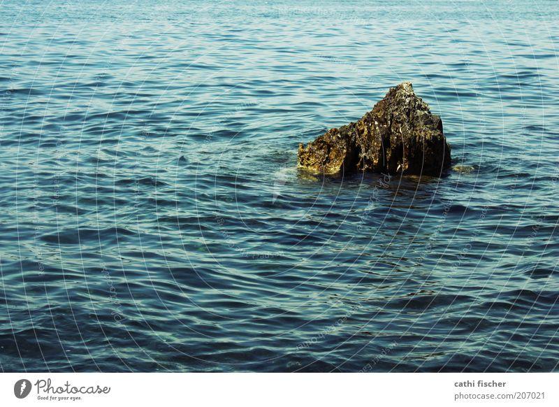 felsen im meer Wasser Meer blau Sommer Einsamkeit Stein Zufriedenheit braun Wellen nass Felsen Insel Schönes Wetter Kroatien wellig Meerwasser