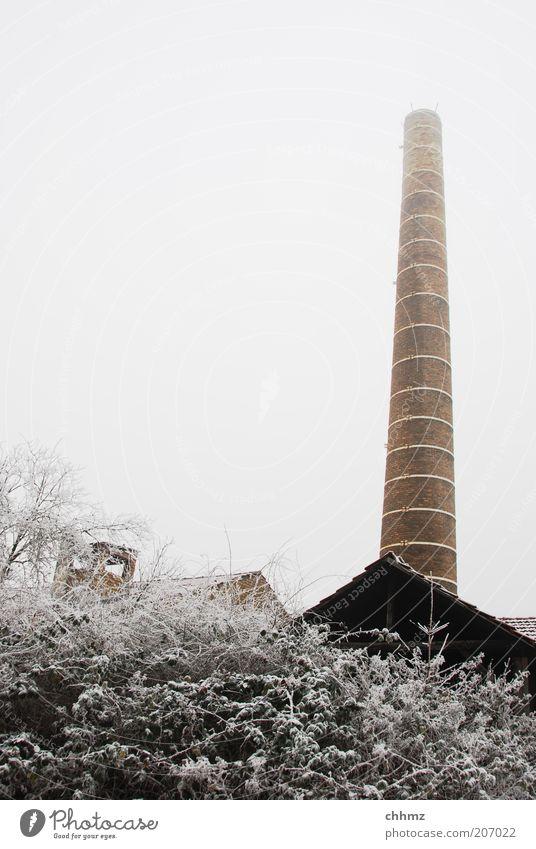 Kalter Kamin Himmel Baum Winter kalt Schnee grau Stein braun hoch Frost Fabrik Sträucher Backstein Verfall aufwärts