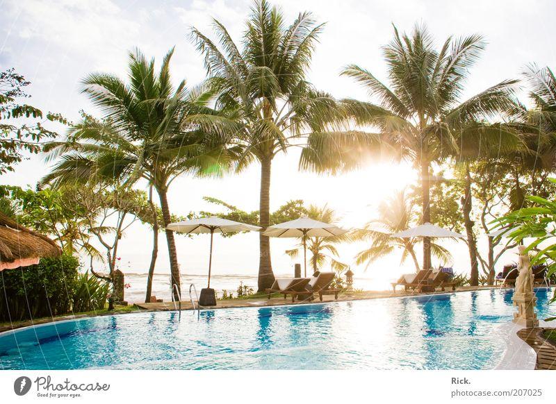 .Bali Sunset Wasser Sonne Meer blau Sommer Ferien & Urlaub & Reisen ruhig Erholung Wellness Insel Schwimmbad Reichtum genießen Palme Schönes Wetter exotisch
