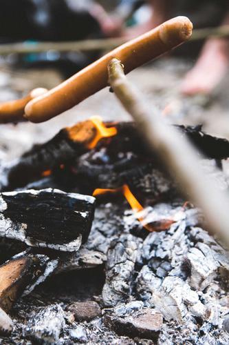 Knackiger Wiener Natur Baum Essen Holz Lebensmittel Feste & Feiern Freizeit & Hobby Ernährung Abenteuer Feuer Team Grillen Fleisch Abendessen Wurstwaren