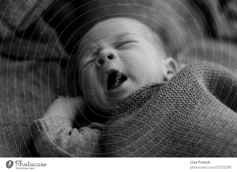 so müde Gesundheit maskulin Baby Kindheit Gesicht 1 Mensch 0-12 Monate Bewegung schlafen träumen frei Zufriedenheit Schutz Geborgenheit Warmherzigkeit Liebe