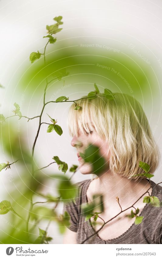 Moment Natur Jugendliche schön Pflanze Blatt ruhig Erwachsene Erholung Leben Frühling träumen Zeit Gesundheit Zufriedenheit blond elegant