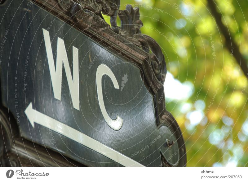 Jetzt aber ... Toilette Schilder & Markierungen Schriftzeichen Pfeil Hinweis Richtung Stuhlgang Metall Jugendstil Emaille Farbfoto Außenaufnahme Menschenleer