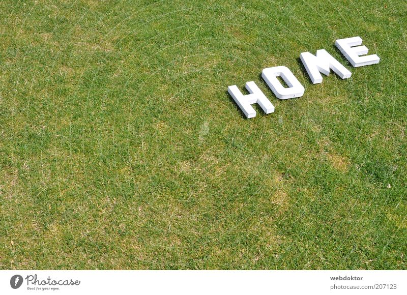 home sweet home Gras Zeichen Schriftzeichen hell Farbfoto Menschenleer Textfreiraum links Buchstaben Rasen Dürre trocken weiß grün Außenaufnahme