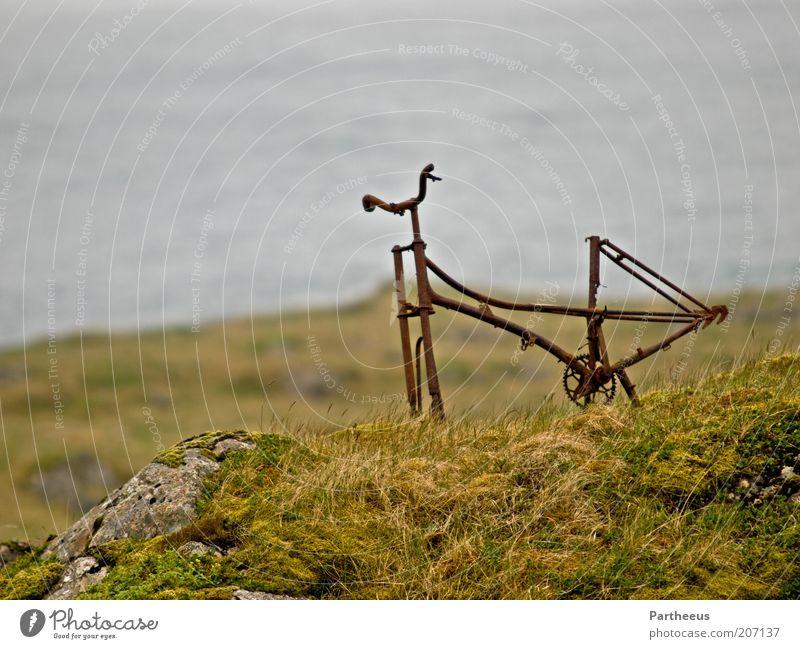 ride the rust Natur Wasser alt Meer grün Pflanze Sommer Ferien & Urlaub & Reisen grau Stein Landschaft braun Metall Felsen Erde