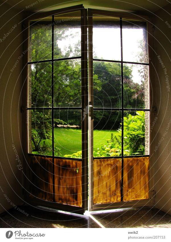 Durchblick Natur Himmel Baum Pflanze Sommer Haus gelb Wand Fenster Gras Garten Freiheit Mauer Wärme Landschaft Tür