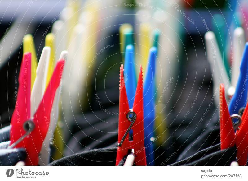 in reih und glied Häusliches Leben hängen blau mehrfarbig gelb rot Wäscheklammern Sauberkeit gewaschen festhalten trocknen Ordnung Reihe Wäscheleine