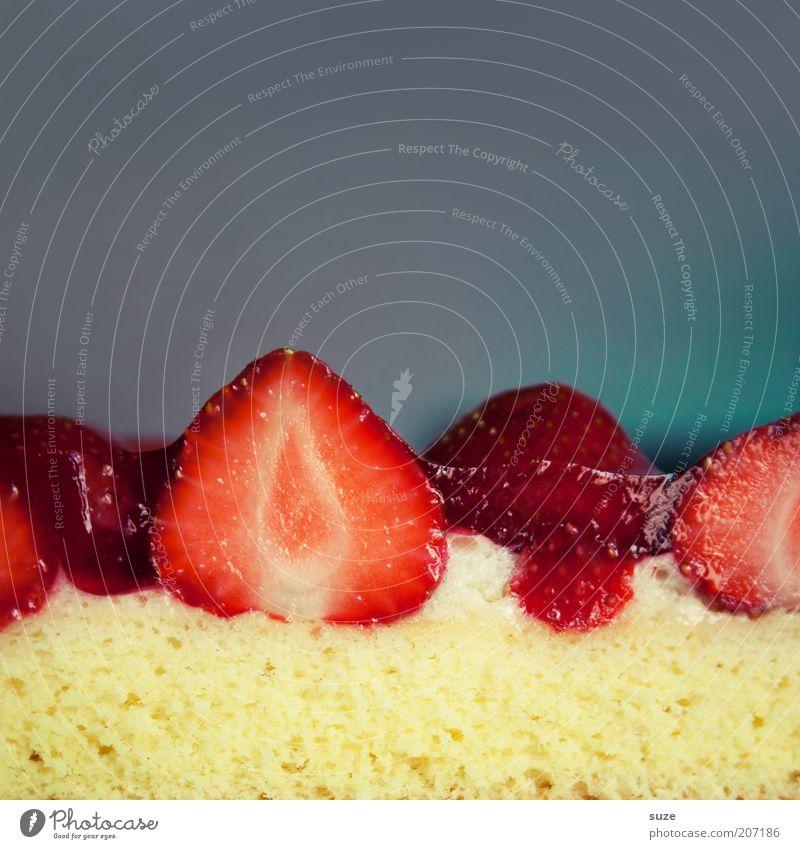 Erdberge rot grau Gesundheit Frucht Lebensmittel frisch Ernährung süß Appetit & Hunger lecker Kuchen Torte Anschnitt Erdbeeren Dessert Vegetarische Ernährung