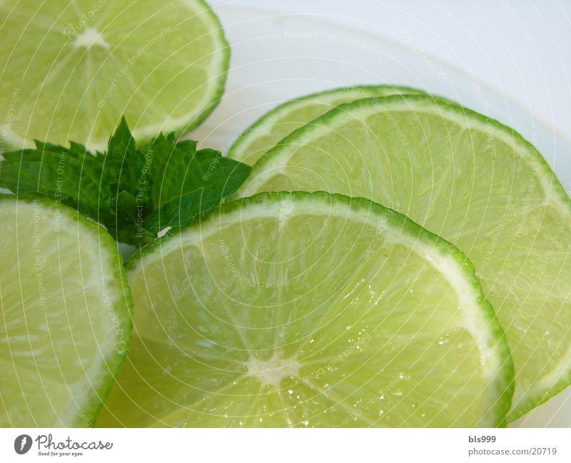 Limetten-Scheiben mit Pfefferminze Alkohol Limone Zutaten Südfrüchte Getränkezutat
