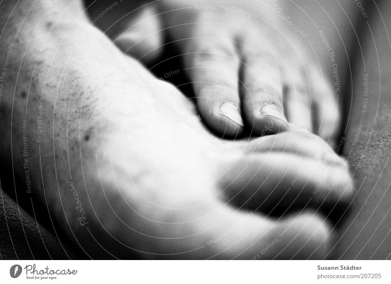 wohlfühlen. Mensch Mann Hand Erwachsene Fuß natürlich Haut Barfuß Leberfleck Hautpilz Juckreiz Zehenspitze Fußpilz Nackte Haut Männerfuß