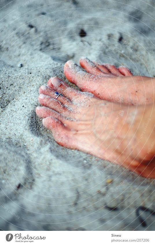 Füsse im Sand Fuß Sandfloh berühren Erholung sitzen Zufriedenheit Strand Sandstrand Ring Frauenfuß Bräune Farbfoto Außenaufnahme Textfreiraum oben