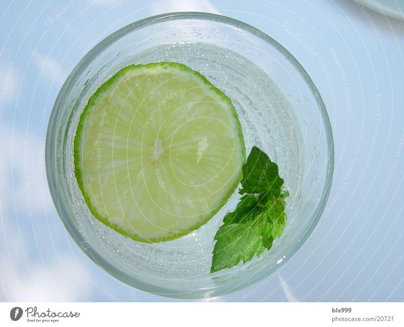 Die schönste Art Saft abzugeben - 2 kalt Getränk Alkohol Limone Minze
