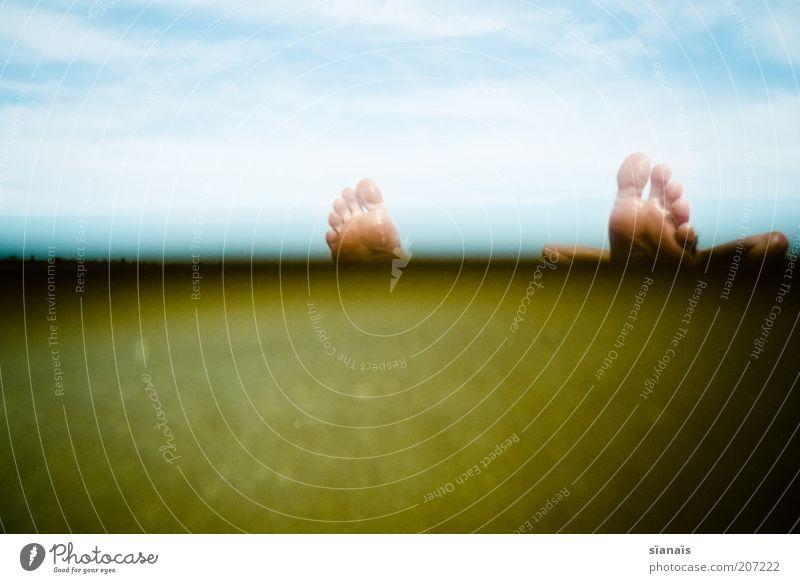 chill`n Mensch Mann Natur Wasser Sommer ruhig Leben Erholung Fuß See Zufriedenheit Erwachsene maskulin Umwelt liegen