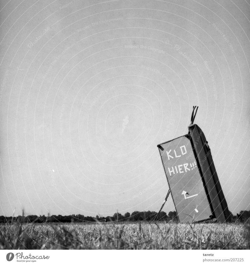 Bastion der Zivilisation Natur Sommer Wiese Gras verrückt leer Rasen Schriftzeichen Sauberkeit Toilette außergewöhnlich Toilette Pfeil Hütte Gesellschaft (Soziologie) Kreativität