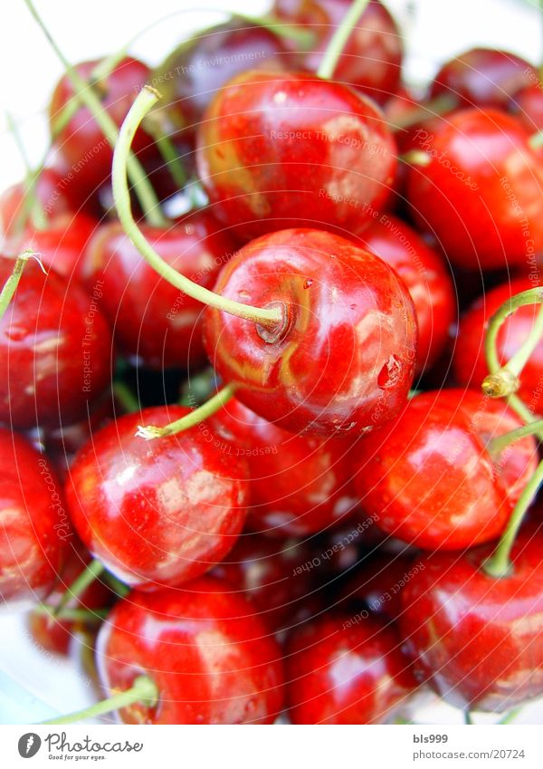 Kirschen - Sünde? rot Sommer Gesundheit Frucht Kirsche
