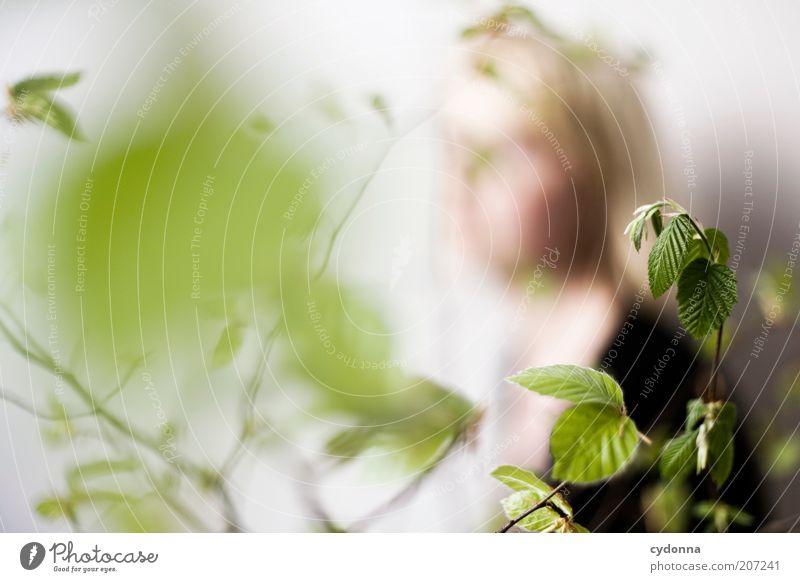 Abwesend Frau Mensch Natur grün schön Pflanze Blatt ruhig Erholung Leben Frühling träumen Gesundheit Zufriedenheit blond
