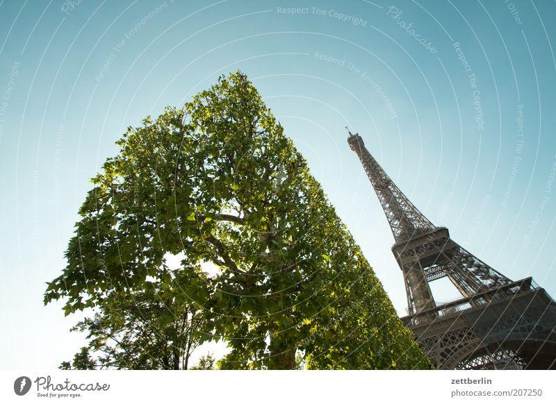 Mehr Eiffeltürme für alle! blau grün Ferien & Urlaub & Reisen Sommer Architektur Frühling Metall Tourismus Baustelle Sträucher Reisefotografie Paris Stahl Schönes Wetter Wahrzeichen
