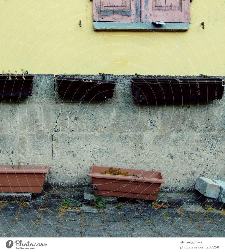 schöner wohnen. Umwelt Haus Ruine Mauer Wand Fassade Fenster Stein alt mehrfarbig Verfall Vergänglichkeit Außenaufnahme Blumenkasten Fensterladen verfallen
