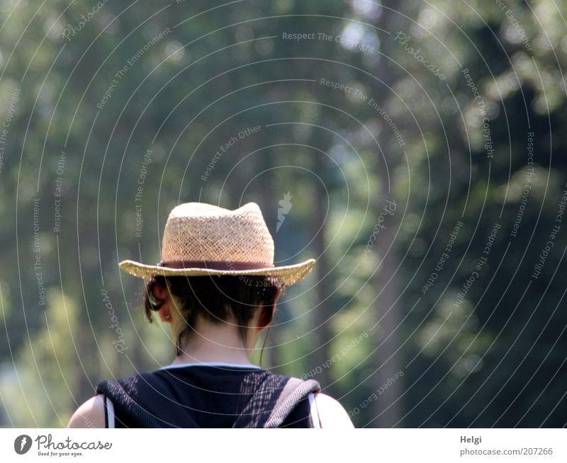 lustwandeln.... Frau Mensch Natur Baum grün Sommer ruhig Senior Einsamkeit feminin Haare & Frisuren Kopf Park braun Erwachsene