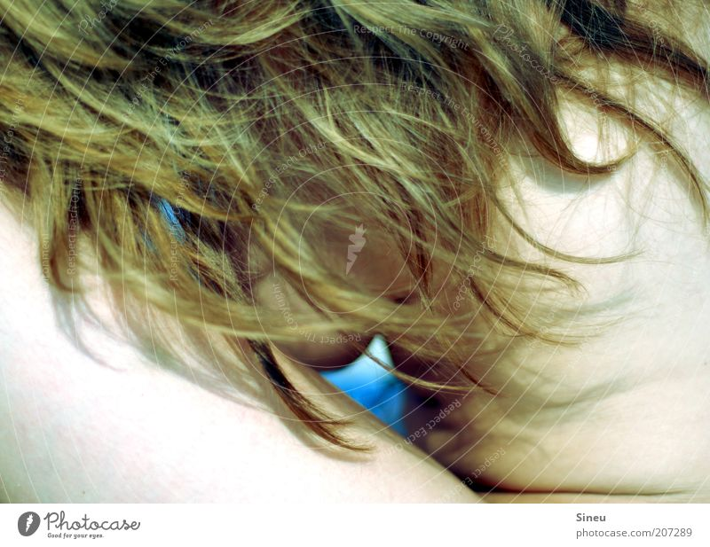 Guckloch feminin Frau Erwachsene Haut Haare & Frisuren 1 Mensch Schönes Wetter brünett langhaarig Denken genießen träumen heiß ruhig Trägheit Einsamkeit